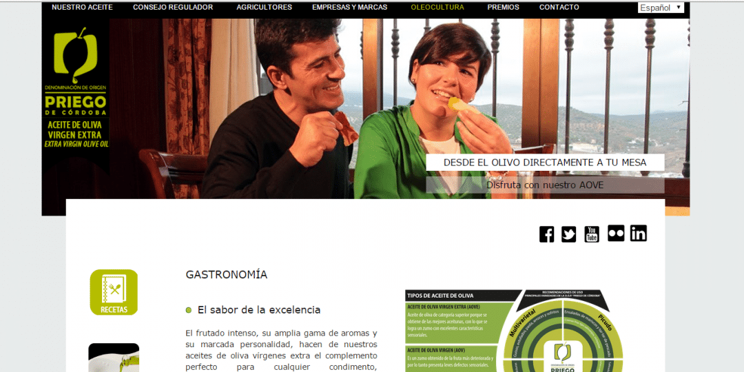 Programación Página web oficial DOP Priego de Córdoba