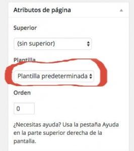 Seleccionar Plantilla