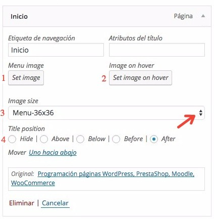 Plugin Menu Image Options